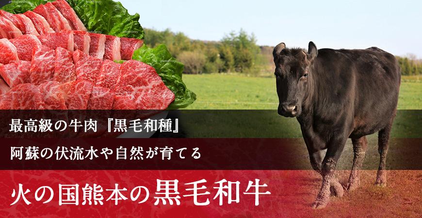 肉のみやべが厳選した、黒毛和牛